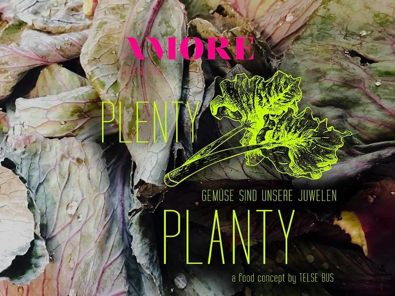 PLENTY PLANTY 28
